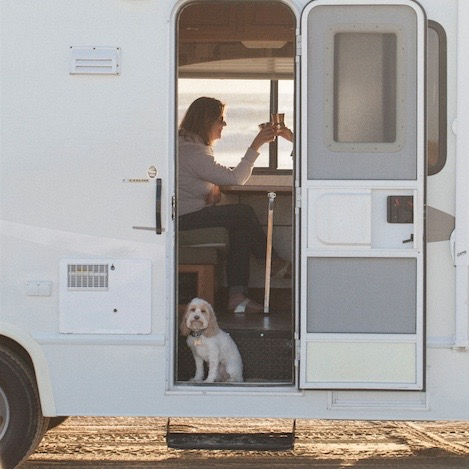 Road Tripping with Pets: What You Should Know