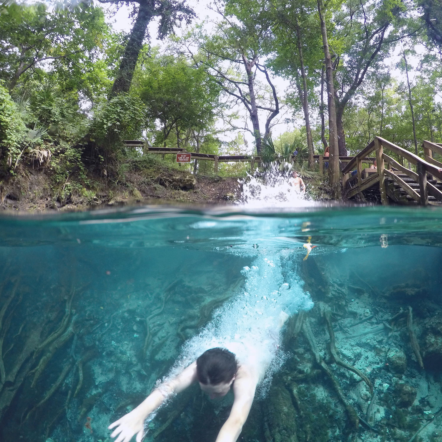 Beat The Summer Heat At Florida S Freshwater Springs