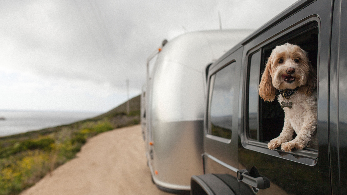 Top 10 RV Trip Destinations for You and Your Pet in Texas