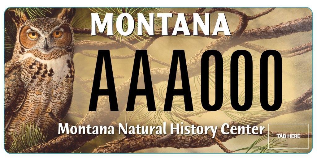 Why Do So Many Rvs Have Montana And South Dakota License