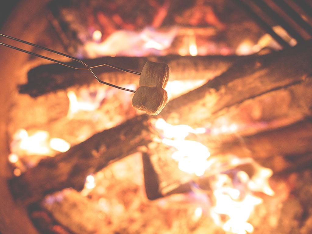 GIMME S'MORE! Campfire S'mores Recipes