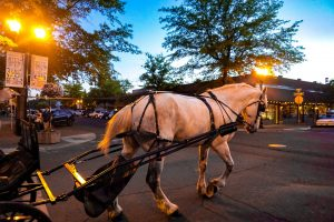 Carriage ride downtown Bend, Oregon