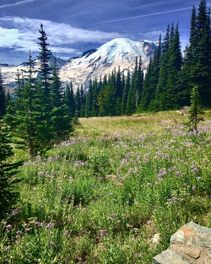 one day in mt rainier national park