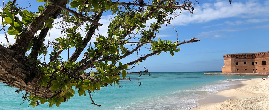 activities dry tortugas | Outdoorsy RV Rental Marketplace