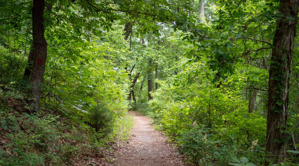 mammoth cave national park | Outdoorsy RV Rental Marketplace