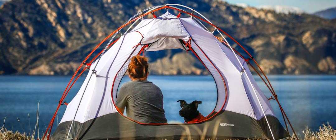 5 Cool Campsites You Can Book Now