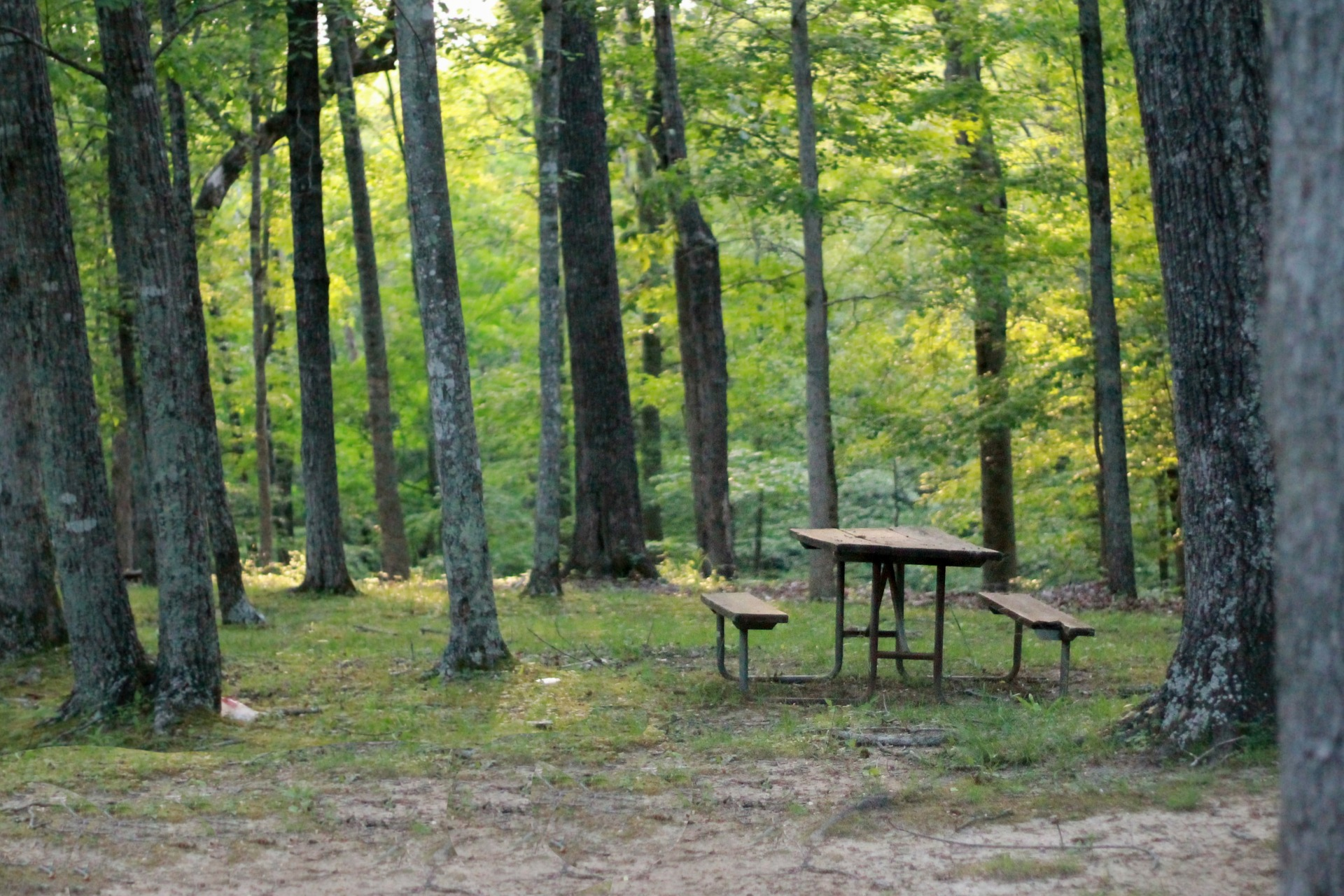 Nature photo | Outdoorsy RV Rental Marketplace