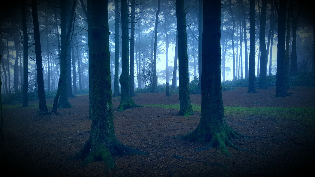Creepy Campgrounds & Parks That Will Make You Want To Stay Inside