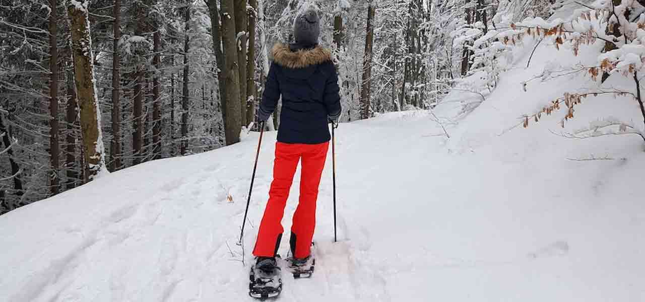 A Beginner's Guide To Snowshoeing