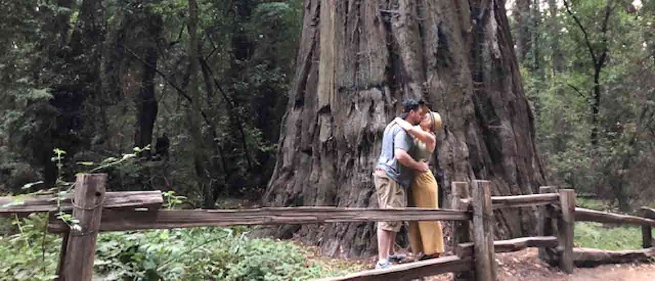 Outdoorsy Renters Get Engaged Among the California Redwoods