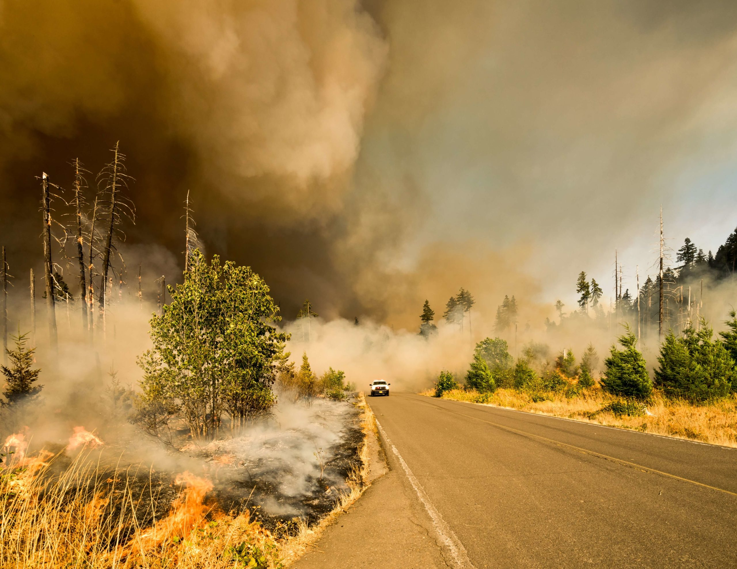 Wildfire safety refresh presented by The Trust For Public Land