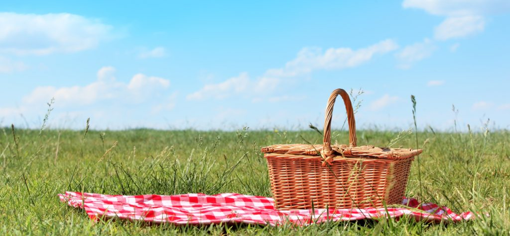 Best picnic spots in every Canadian province. picnic setting on meadow
