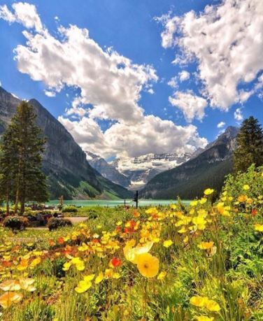 Best picnic spots in every Canadian province. Lake Louise Alberta